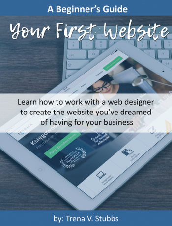 A-Beginner's-Guide-to-Web-Design500x647